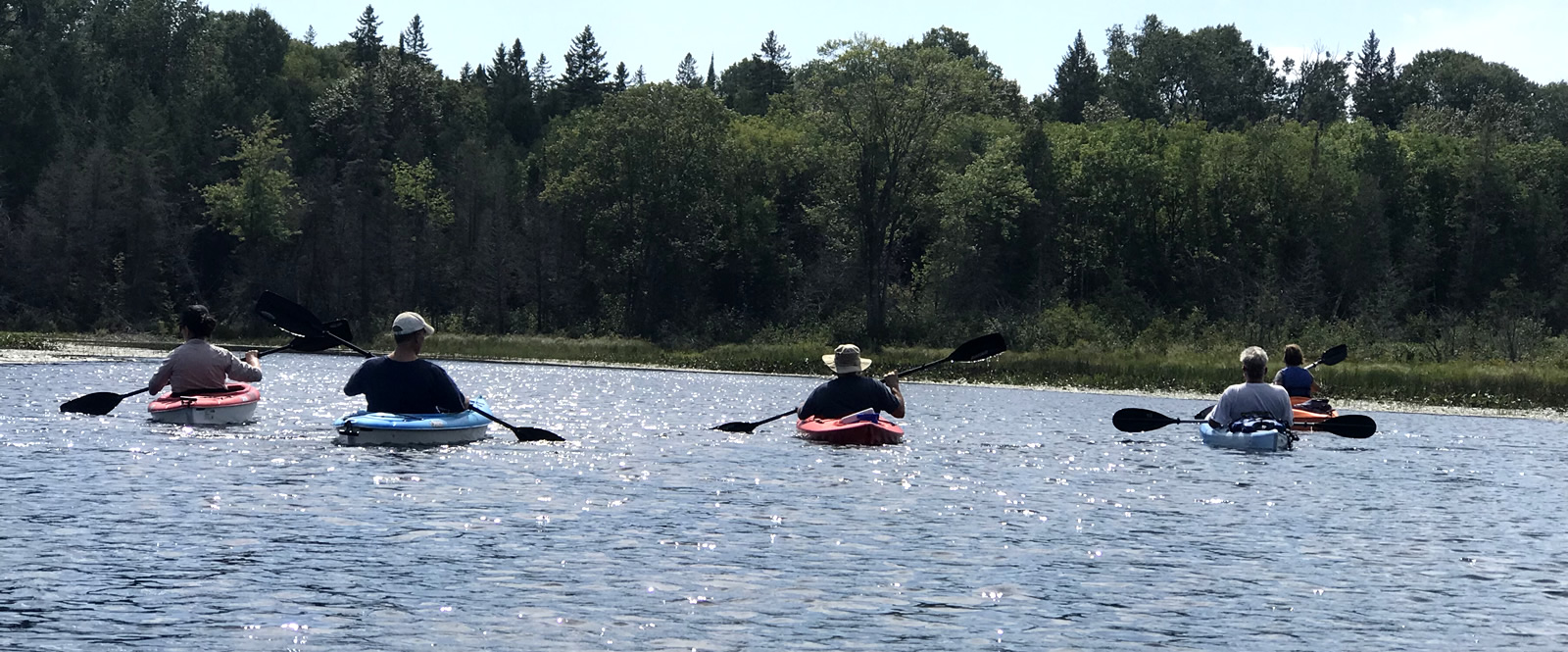 5 kayakers paddling down Beaver Creek
